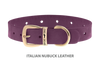 Dog Collar for Divine Dog Studs, Purple Nubuck leather with gold plated hardware