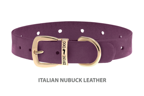 Divine Dog Collar, Nubuck Yummy Plummy-Gold 5/8 inch Wide (17mm), Fits Neck 10 to 12 Inches