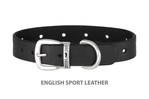 Divine Dog Collar, English Sport Leather Black-Silver 1 inch Wide (25mm), Fits Neck 14 to 16 Inches