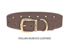 Dog Collar for Divine Dog Studs, Ashford Grey Nubuck leather with gold plated hardware