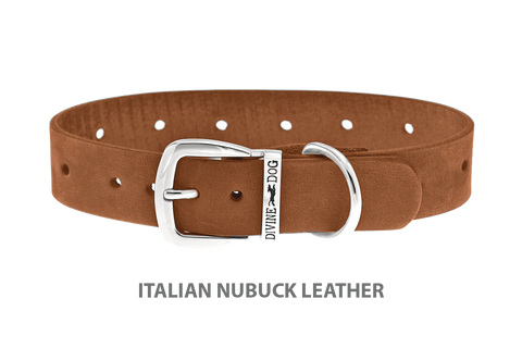 Divine Dog Collar, Nubuck Latte-Silver 1 inch Wide (25mm), Fits Neck 16 to 18 Inches