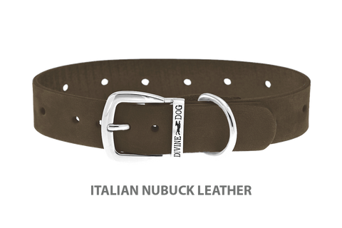 Divine Dog Collar, Nubuck Moss-Silver 1 inch Wide (25mm), Fits Neck 14 to 16 Inches