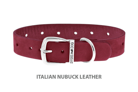 Divine Dog Collar, Nubuck Sunset-Silver 1 inch Wide (25mm), Fits Neck 14 to 16 Inches