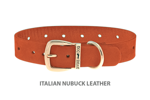 Divine Dog Collar, Nubuck Tiger Lily-Gold 1 inch Wide (25mm), Fits Neck 14 to 16 Inches