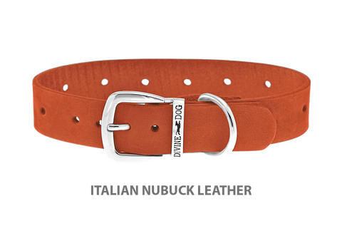 Divine Dog Collar, Nubuck Tiger Lily-Silver 1 inch Wide (25mm), Fits Neck 14 to 16 Inches