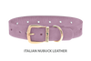Dog Collar for Divine Dog Studs, Violet Nubuck leather with gold plated hardware