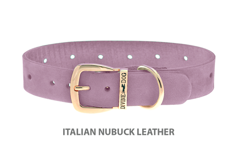 Divine Dog Collar, Nubuck Violet-Gold 1 inch Wide (25mm), Fits Neck 14 to 16 Inches