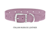 Dog Collar for Divine Dog Studs, Violet Nubuck leather with silver plated hardware