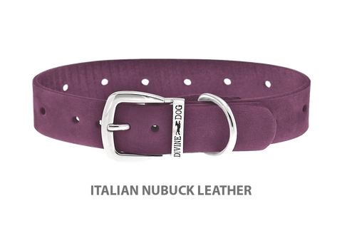 Divine Dog Collar, Nubuck Yummy Plummy-Silver 1 inch Wide (25mm), Fits Neck 18 to 20 Inches