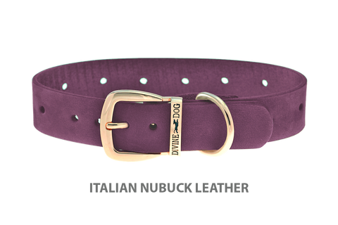 Divine Dog Collar, Nubuck Yummy Plummy-Gold 1 inch Wide (25mm), Fits Neck 16 to 18 Inches