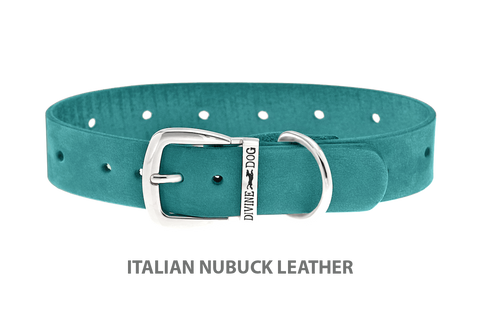 Divine Dog Collar, Nubuck Turquoise-Silver 1 inch Wide (25mm), Fits Neck 14 to 16 Inches