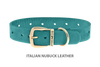 Divine Dog Collar, Nubuck Turquoise-Gold 1 inch Wide (25mm), Fits Neck 16 to 18 Inches