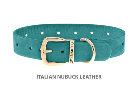 Divine Dog Collar, Nubuck Turquoise-Gold 1 inch Wide (25mm), Fits Neck 14 to 16 Inches
