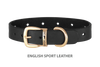 Dog Collar for Divine Dog Studs, Black English leather with gold plated hardware