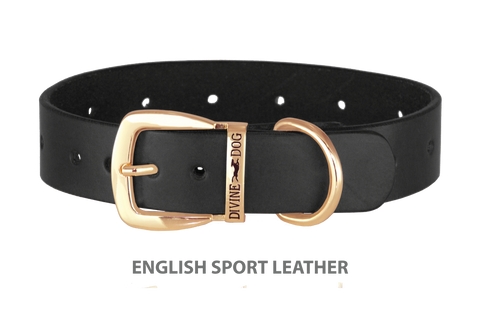 Divine Dog Collar, English Sport Leather Black-Gold 1 1/4 inch Wide (32mm), Fits Neck 20 to 22 Inches