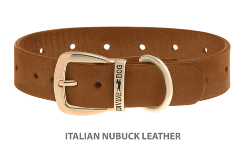Divine Dog Collar, Nubuck Latte-Gold 1 1/4 inch Wide (32mm), Fits Neck 20 to 22 Inches