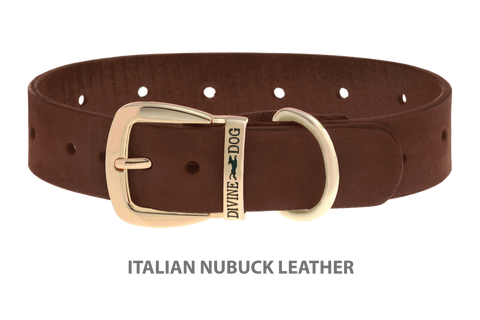 Divine Dog Collar, Nubuck Mocha-Gold 1 1/4 inch Wide (32mm), Fits Neck 20 to 22 Inches