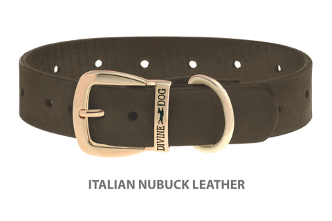 Divine Dog Stud Ready Collar, Moss-Nubuck with Gold Plated Buckle $24.99 to $69.99