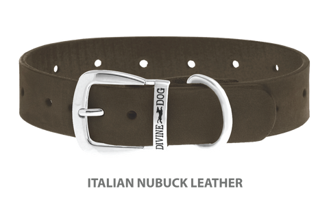 Divine Dog Collar, Nubuck Moss-Silver 1 1/4 inch Wide (32mm), Fits Neck 16 to 18 Inches