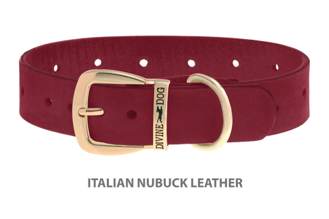 Divine Dog Collar, Nubuck Sunset-Gold 1 1/4 inch Wide (32mm), Fits Neck 18 to 20 Inches