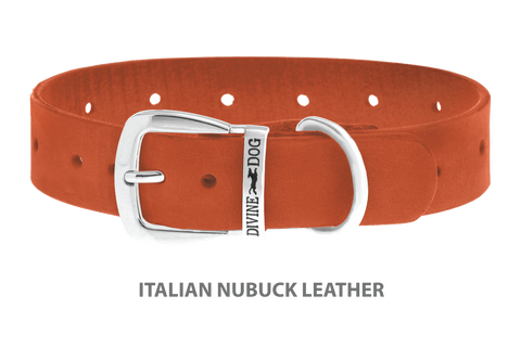 Divine Dog Collar, Nubuck Tiger Lily-Silver 1 1/4 inch Wide (32mm), Fits Neck 16 to 18 Inches