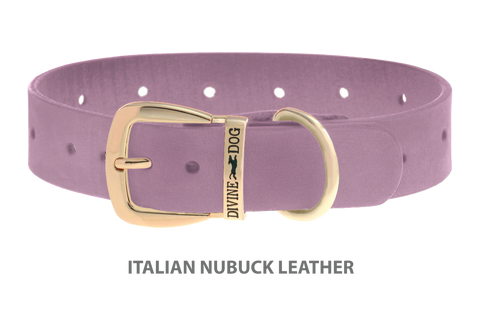 Divine Dog Collar, Nubuck Violet-Gold 1 1/4 inch Wide (32mm), Fits Neck 16 to 18 Inches