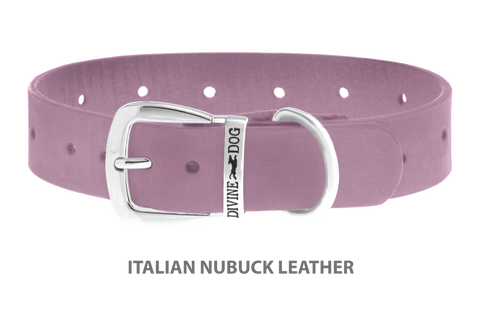 Divine Dog Collar, Nubuck Violet-Silver 1 1/4 inch Wide (32mm), Fits Neck 16 to 18 Inches