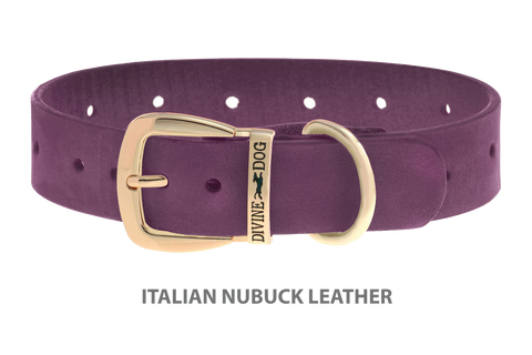 Divine Dog Collar, Nubuck Yummy Plummy-Gold 1 1/4 inch Wide (32mm), Fits Neck 16 to 18 Inches
