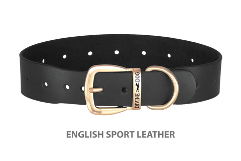 Divine Dog Collar, English Sport Leather Black-Gold 1 1/2 inch Wide (38mm), Fits Neck 20 to 22 Inches