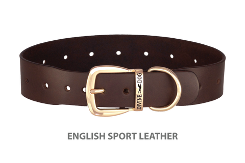 Divine Dog Collar, English Sport Leather Havana-Gold 1 1/2 inch Wide (38mm), Fits Neck 20 to 22 Inches