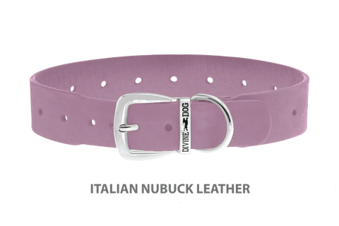 Divine Dog Collar, Nubuck Violet-Silver 1 1/2 inch Wide (38mm), Fits Neck 20 to 22 Inches