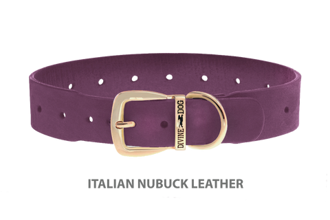 Divine Dog Collar, Nubuck Yummy Plummy-Gold 1 1/2 inch Wide (38mm), Fits Neck 22 to 24 Inches