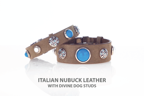 Divine Dog Owner Bracelet with Turquoise Studs