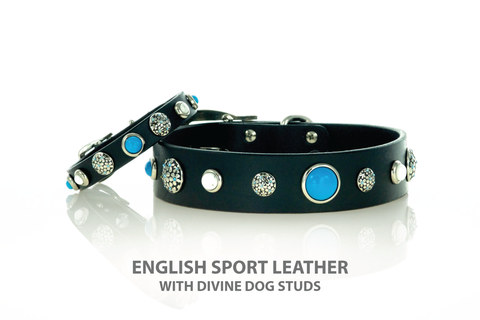 Divine Dog Leather Collar with Turquoise Studs