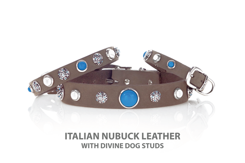 Beautiful Dog Collar with Turquoise and Howlite set in Silver Plated screw back studs