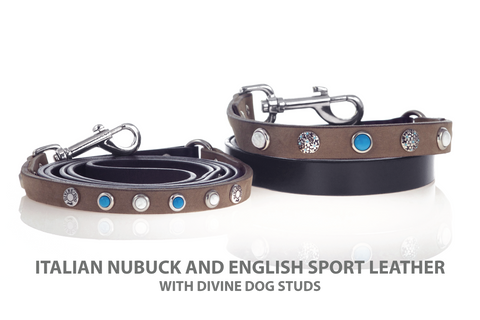 Beautiful Leather Leash with Turquoise and Howlite set in Silver Plated screw back studs