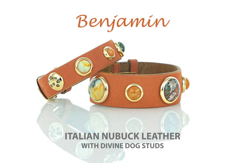 Divine Dog Benjamin Collection Leather Dog Collars with Healing Gemstones