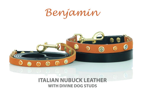 Divine Dog Benjamin Collection Leather Dog Leashes with Gemstones