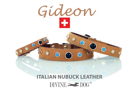 Gideon Collection of Leather Dog Collars with Gemstones