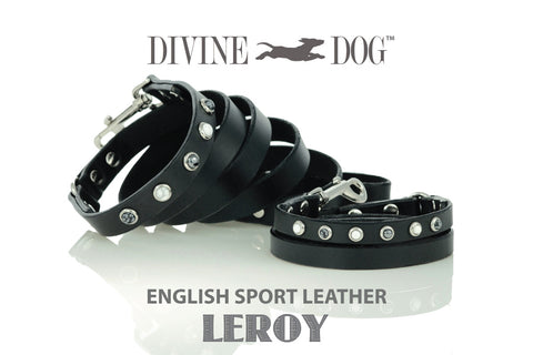 Divine Dog Luxury Leather Dog Leash with Lealing Gemstones - Leroy Collection