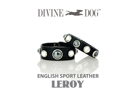 Divine Dog Owner Bracelet with Gemstones - LEROY COLLECTION