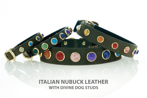 Leather Dog Collars with a Rainbow of Gemstone Studs.