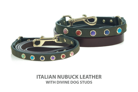 Leather Dog Leashes with a Rainbow of Gemstone Studs