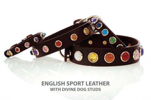 Beautiful Leather Dog Collars with a Rainbow of Gemstone Studs.