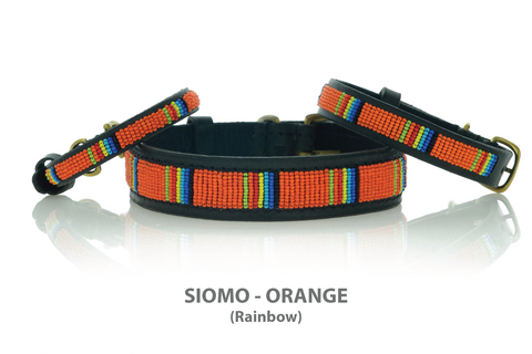 Rainbow Dog Collar Beaded - Kenya Collars