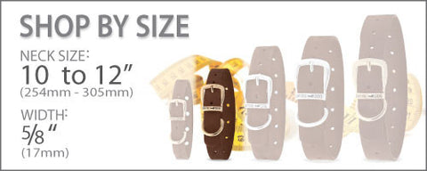 Dog Collar Size Chart 10 to 12 Inches