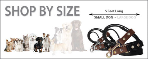 Divine Dog Stud Ready Leash, Small Dog or Cat, 1/2 inch Wide (14mm), 5 Feet Long (1.52m)