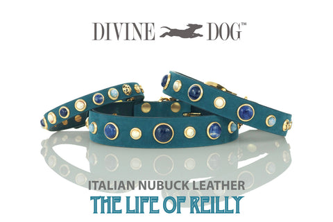 Divine Dog Beautiful Blue Leather Collars with Gemstones - The Life of Reilly Collection