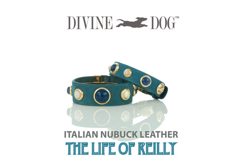 Divine Dog's Blue Leather Companion Bracelet with Gemstones - The Life of Reilly Collection