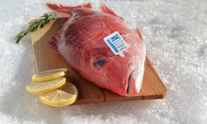 Red Snapper (Whole) - Katies Seafood Market